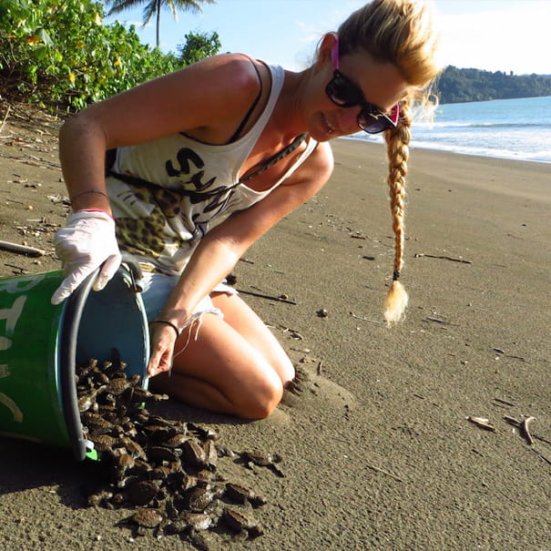 Volunteer in Costa Rica                                                                     | Programs, Guidance & Reviews