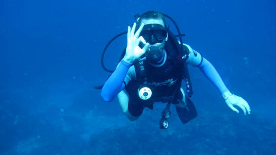 Diving and Marine Conservation Expedition