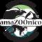 Amazoonico