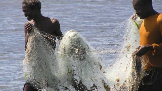 Marine & Environment Conservation