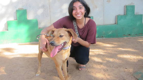 Animal Shelter Buddy and Associate